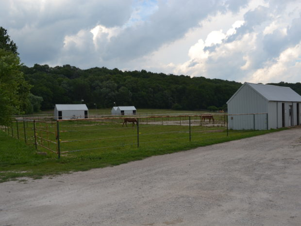 1/8 Acre Paddock Boarding with Stall and Attached Tackroom